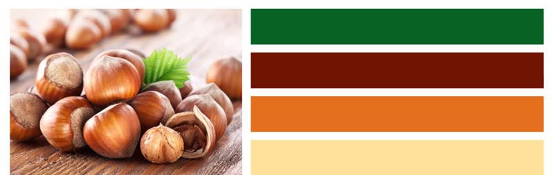 Hazelnut Growers Bargaining Association Color Palette - Hazelnut Logo